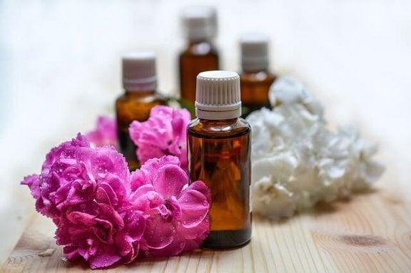 Geruchsforschung: Worum geht es?
