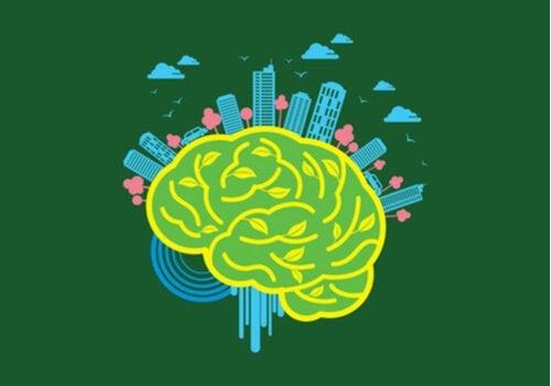 Neuroarchitektur: Die Wirkung der Umwelt auf das Gehirn