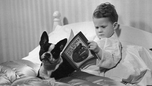 Ein Junge liegt im Bett und liest, während sein Hund daneben liegt.