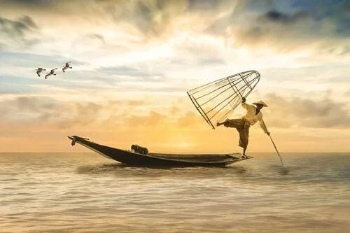 Fischer im Gleichgewicht