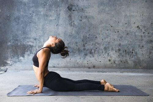 Die Kobra im Yoga.