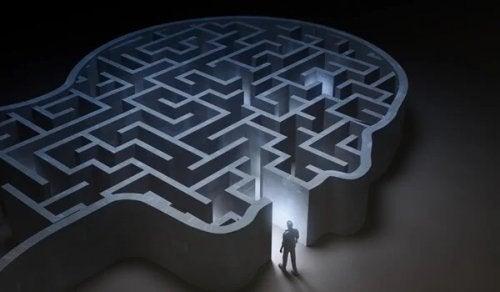 Kopf als Labyrinth