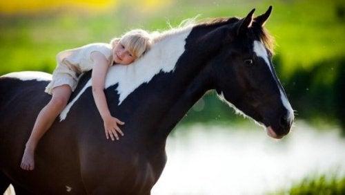 Ein Mädchen umarmt ein Pferd.