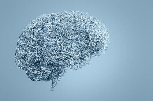 Gehirn aus Draht