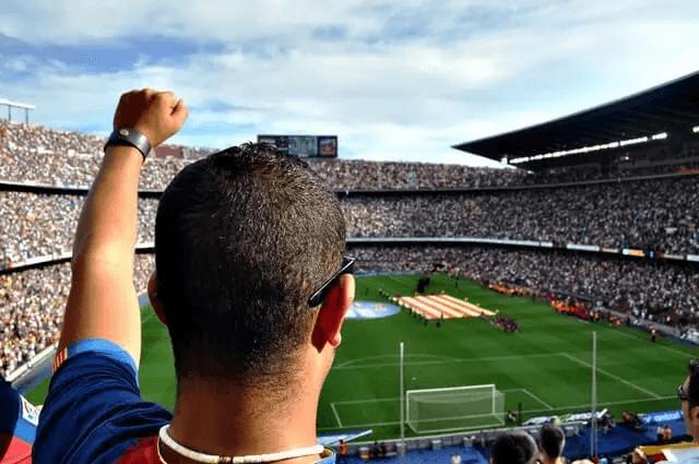 Fußballfan im Stadion