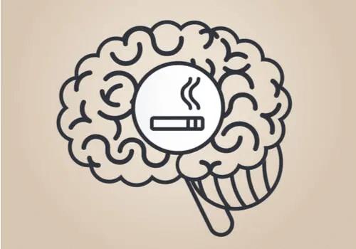 Nikotin: Wie wirkt es sich auf das Gehirn aus?