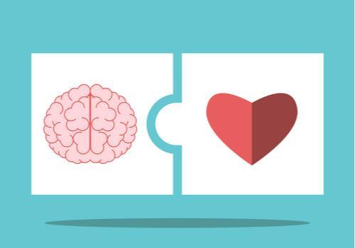 Die emotionale Intelligenz nach Salovey und Mayer