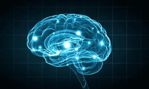 Untersuchungsmethoden auf dem Gebiet der Biopsychologie