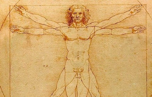 Ein Werk von Leonardo Da Vinci