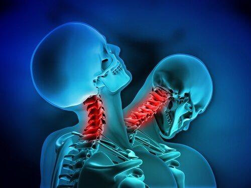 Zwei Skelette mit roten Wirbelsäulen.