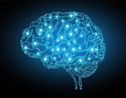 Ein Gehirn leuchtete mit blauen Lichtern auf.