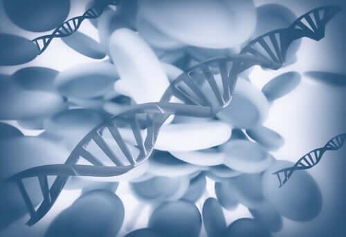 Epigenetik: Können wir Tragödien erben?