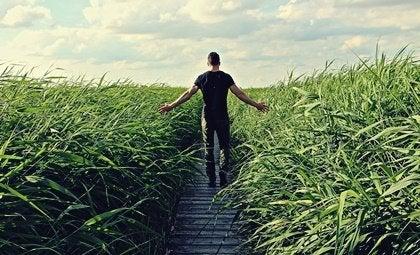 Das Gesetz der geringsten Anstrengung verbindet dich mit der Natur
