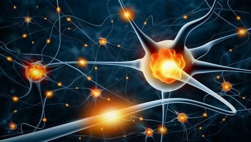 Periphere Neuropathie kann die Folge einer Verletzung, Infektion oder genetischen Störung sein