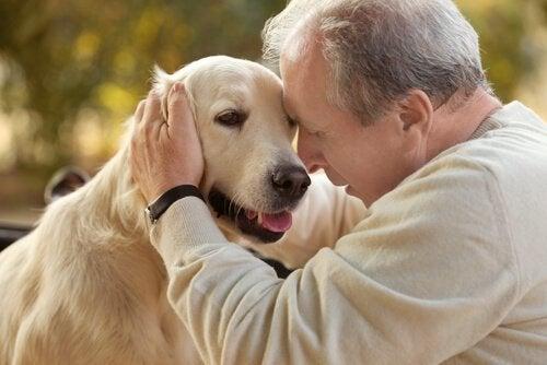 Tiergestützte Therapie bei Alzheimer-Patienten