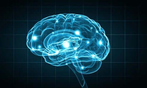 Gehirn, das blau leuchtet