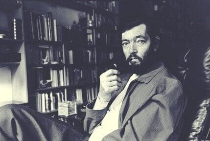 Julio Cortázar: Das Leben eines argentinischen Intellektuellen