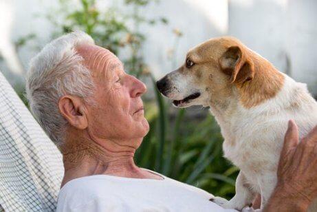Ein älterer Mann und ein Hund stehen sich gegenüber.
