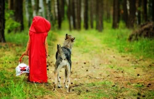 Der Wolf bei Rotkäppchen ist gar nicht böse!