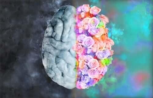 Neuroästhetik: Verbindung von Neurologie und Kunst