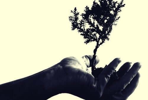 Anteilnehmendes Mitgefühl wurde von dem Psychologen und Emotionalexperten Paul Ekman definiert.
