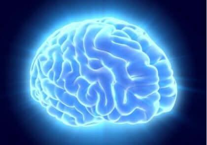 Ein beleuchtetes blaues Gehirn.