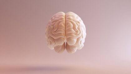Ein schwebendes Gehirn.