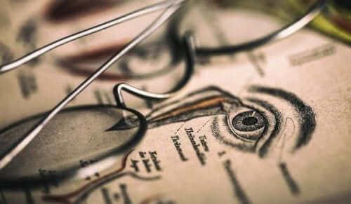 Optographie - Brille auf einer Zeichnung