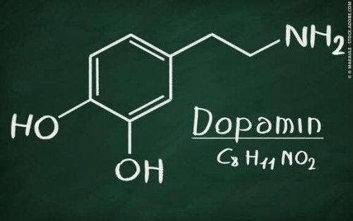 Sucht - Dopamin