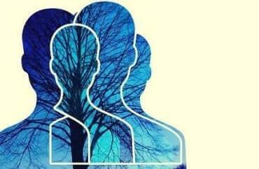 die Theorie des Geistes ist für soziale Beziehungen viel wichtiger als Empathie.