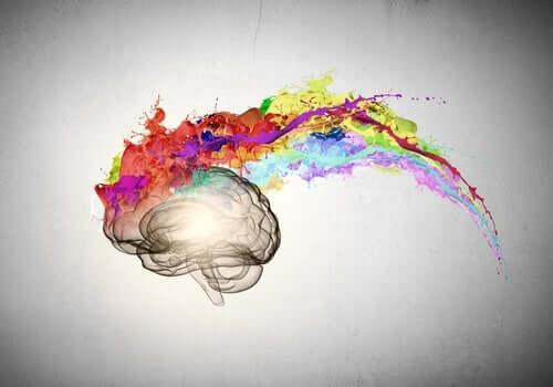 Mirror-Touch-Synästhesie - Gehirn aus dem Farben austreten