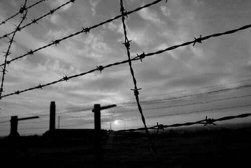 1943 schickte die Gestapo Ferster in ein Konzentrationslager.