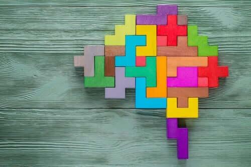 Auf neuroanatomischer Ebene besteht ein Zusammenhang zwischen Kreativität und der Funktion des präfrontalen Kortex, der für höhere kognitive Funktionen verantwortlich ist.