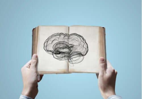 Neurowissenschaften: Können wir Wissen erben?