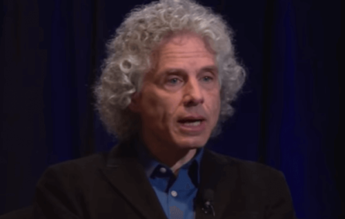 Steven Pinker: Der Vater der Evolutionspsychologie
