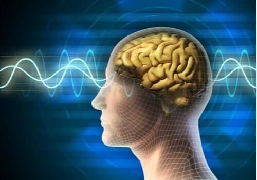 Die Elektrokonvulsionstherapie: Anwendungsbereiche