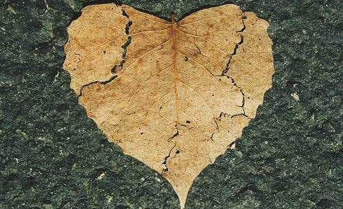 Emotionale Selbstverletzung: Was ist das und wie kannst du sie verhindern?