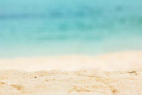 Umweltschutz - Strand