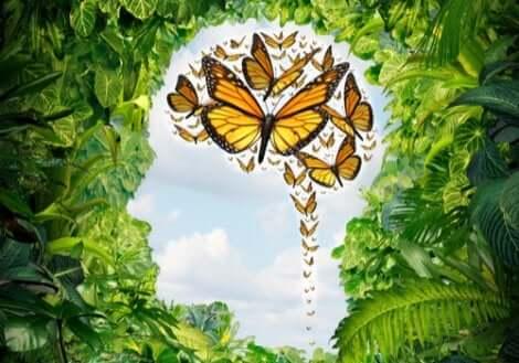 Inmitten des Chaos positive Gedanken