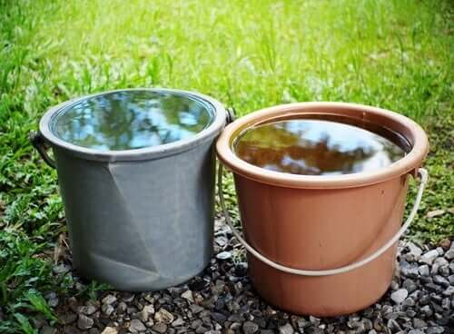 Experiment von Quattrone und Tversky - zwei Wassereimer
