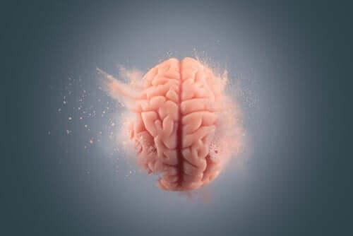 Die Auswirkungen von Kokain auf das Gehirn