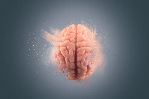 Vergessen ist schwieriger - Gehirn im Wasser