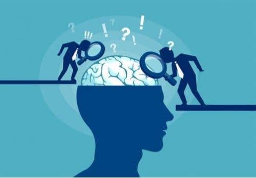 Alle Neuromythen haben ihren Ursprung in echten wissenschaftlichen Erkenntnissen