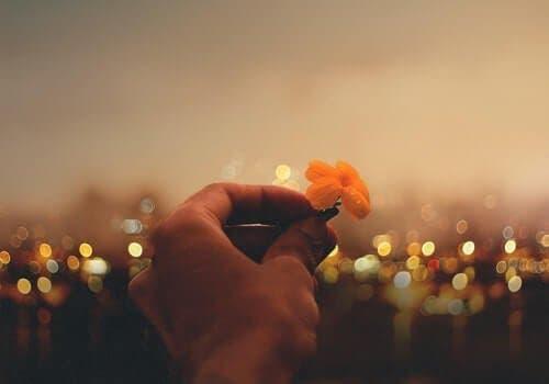 Weisheiten von Viktor Frankl über Liebe, Sinn und Mut