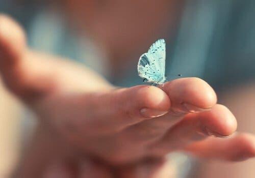 Weisheiten von Viktor Frankl - Hand mit Schmetterling