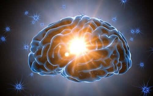 Überraschungen - Gehirn