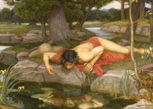 Erich Fromm - Narziss am Wasser