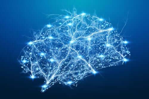 neuronale Synchronisation - erleuchtete Nervenbahnen