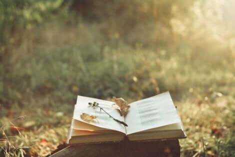 Dickinson liebte es bereits in jungen Jahren, Geschichten für ihre Klassenkameraden zu erfinden