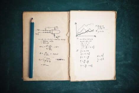 Sie leistete wichtige Beiträge zur Mathematik und Physik